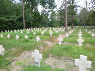 Galeria Starcy Cmentarz Jeniecki - po konserwacji